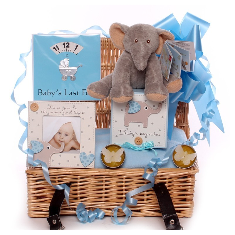 Small elephant baby hamper cute little boy elephant themed baby hamper negle Images